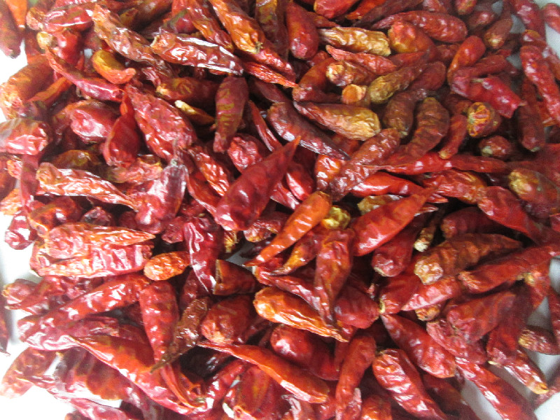 Dried Chilli - Extra hot